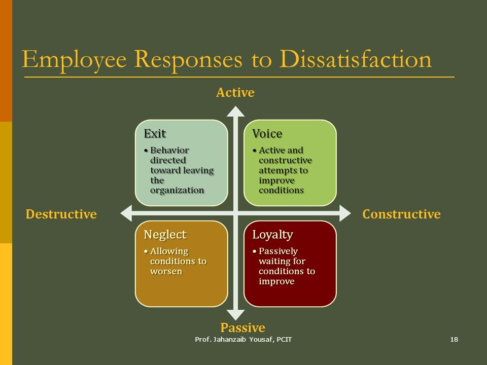 Employee attitudes and job satisfaction ppt