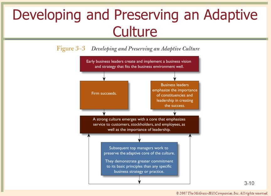 Developing and Preserving an Adaptive Culture