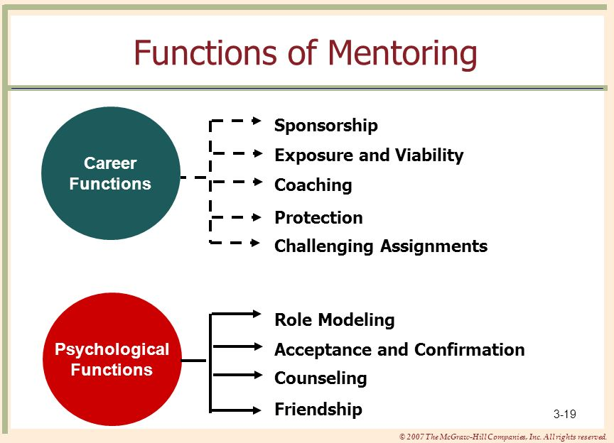 Functions of Mentoring
