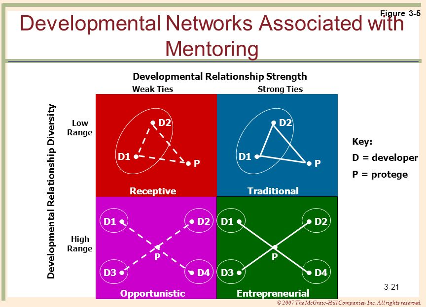 Developmental Networks Associated with Mentoring