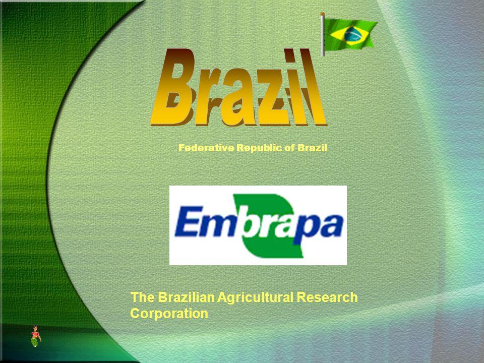 Federative Republic Of Brazil Ppt Download - Federative republic of brazil map