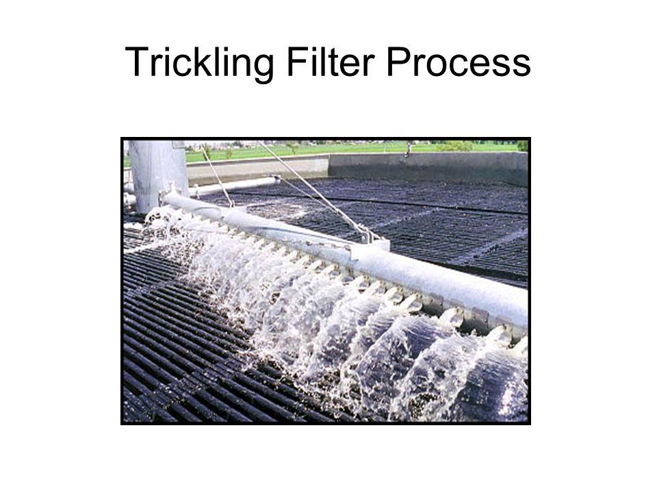Trickling Filter Process