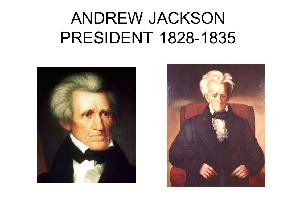 the presidency of andrew jackson The cherokees vs andrew jackson john ross and major ridge tried diplomatic and legal strategies to maintain autonomy, but the new president had other plans.