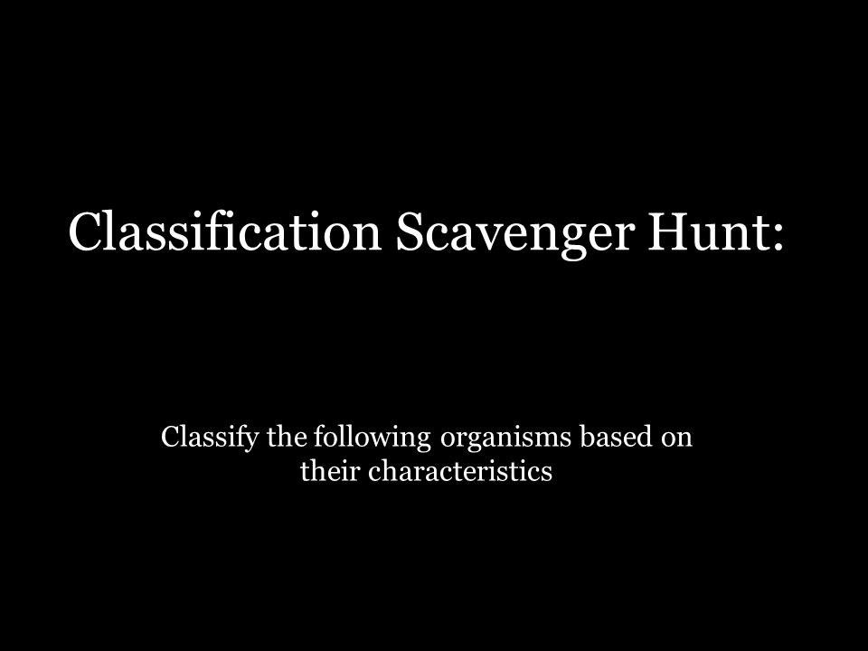 Classification Scavenger Hunt:
