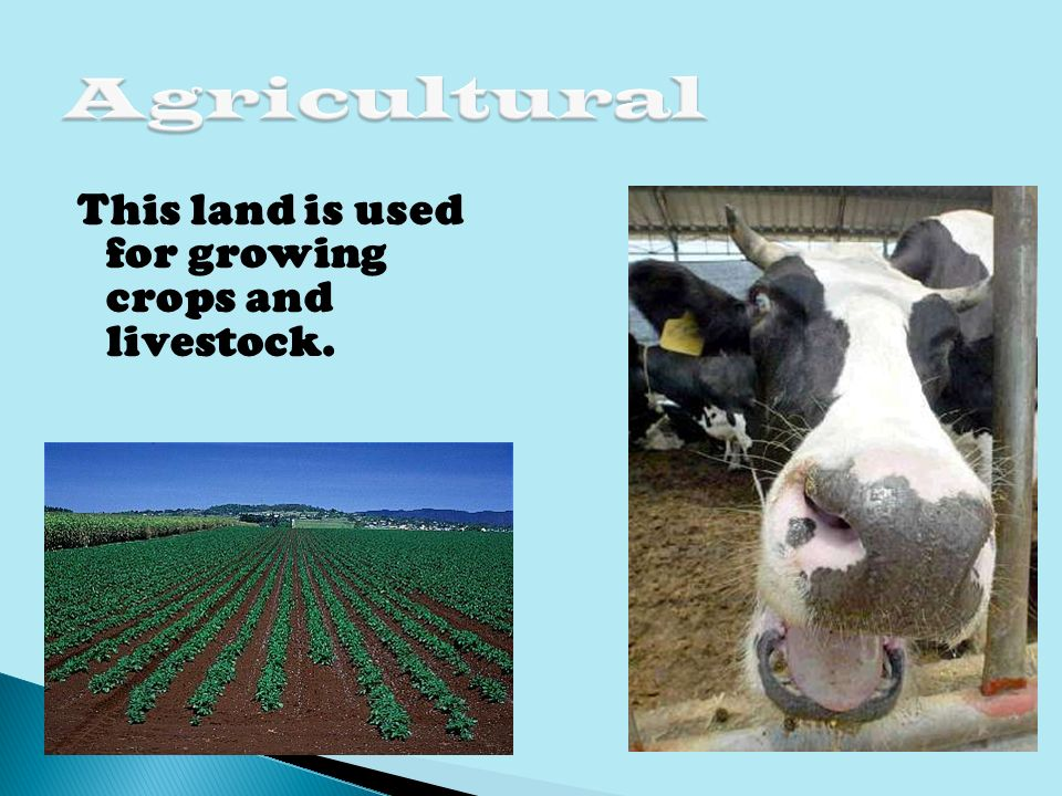 Types of Land Uses Recreational Transport Agricultural