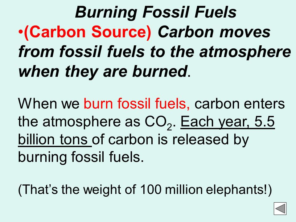 Burning Fossil Fuels (Carbon Source) Carbon moves from fossil fuels to the atmosphere when they are burned.
