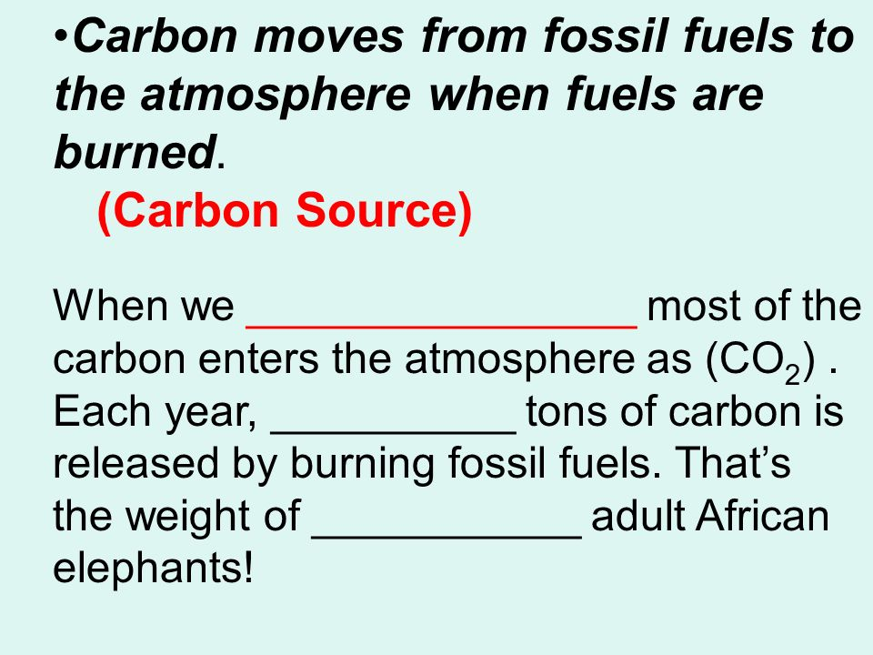 Carbon moves from fossil fuels to the atmosphere when fuels are burned.