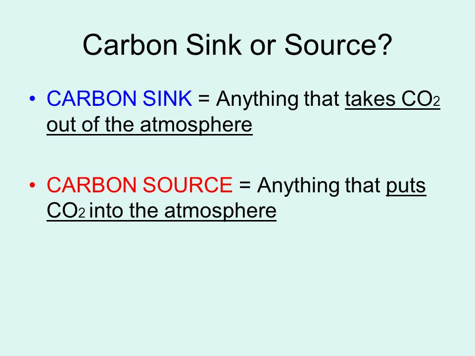 Carbon Sink or Source. CARBON SINK = Anything that takes CO2 out of the atmosphere.