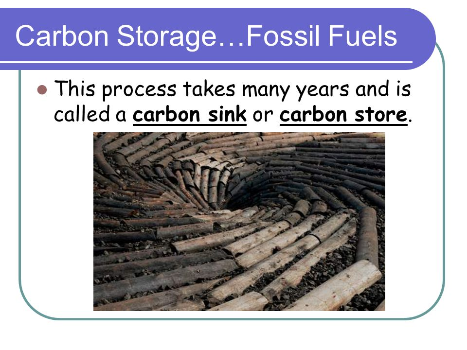 Carbon Storage…Fossil Fuels