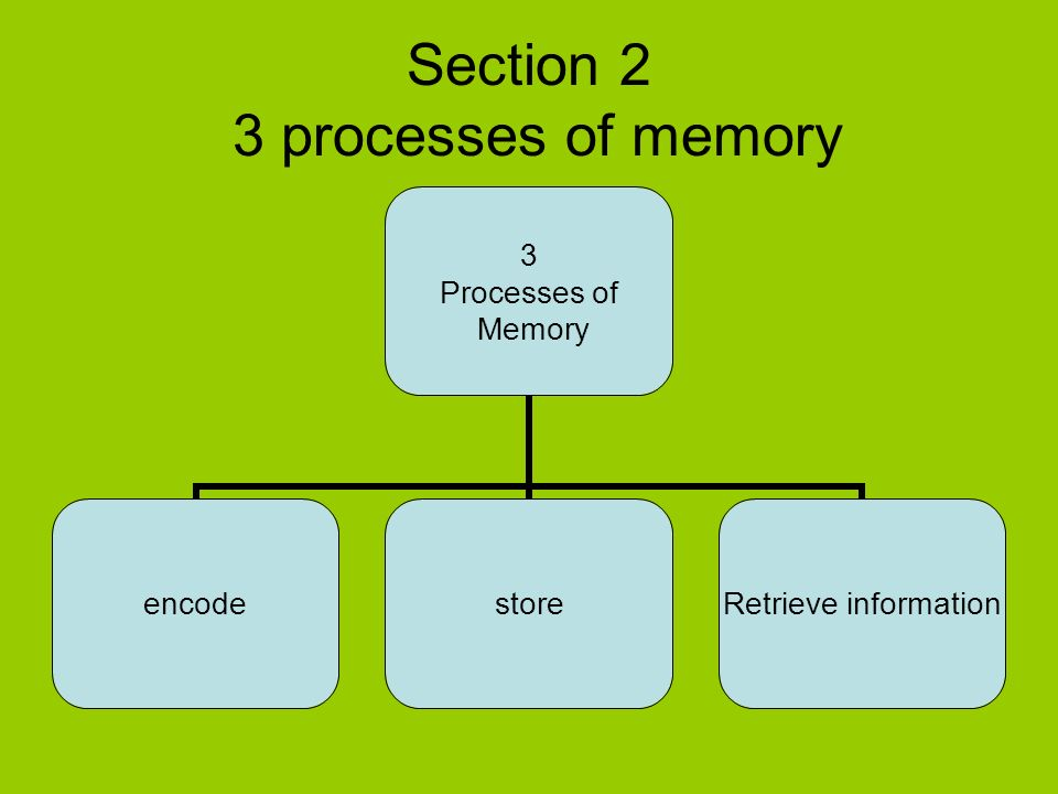 memory process Zombies probably won't consume 32 gb of your memory like they did to me, but zombie processes do exist, and i can help you find them and make sure that developers fix them tool source link.