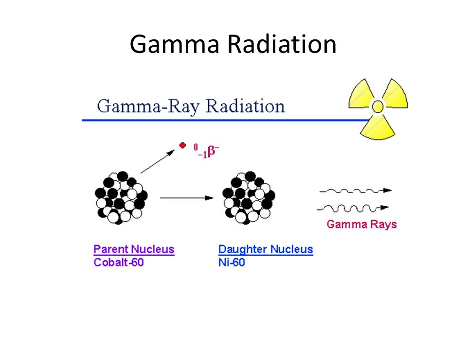 "the use of gamma radiation from cobalt 60 The radionuclide used almost always for the irradiation of food by gamma rays is cobalt-60 it is produced by neutron bombardment in a nuclear reactor of the metal cobalt-59, then doubly encapsulated in stainless steel ""pencils"" to prevent any leakage during its use in a radiation plant."