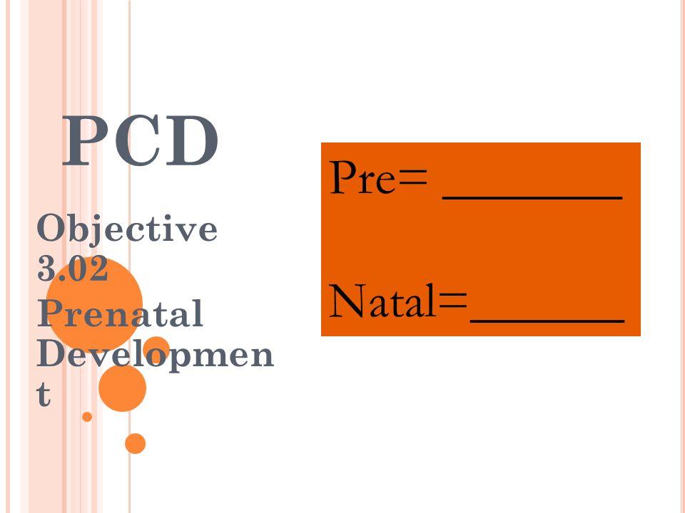 Objective 3.02 Prenatal Developmen t