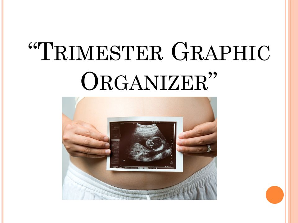 Trimester Graphic Organizer