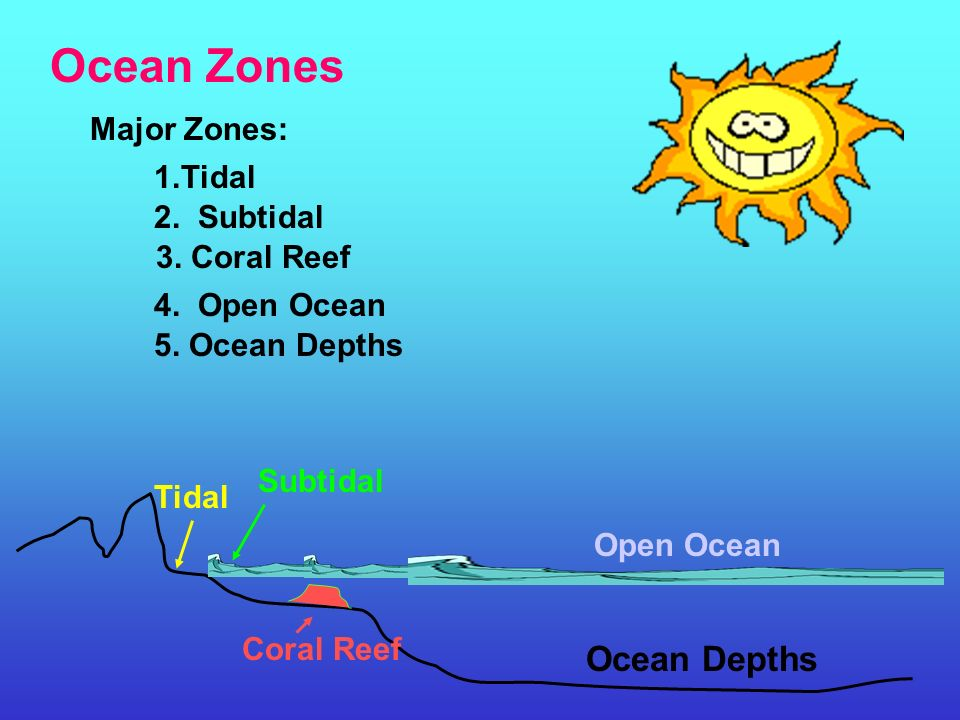 Ocean Zones Ocean Depths Major Zones: 1.Tidal 2. Subtidal - ppt ...