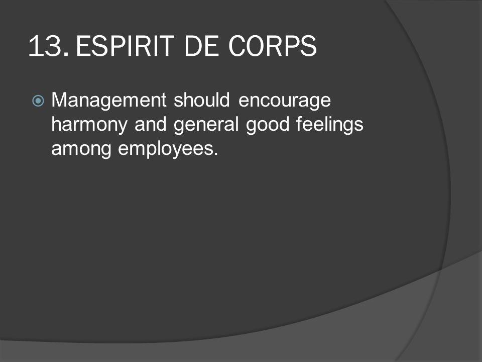 13. ESPIRIT DE CORPS Management should encourage harmony and general good feelings among employees.