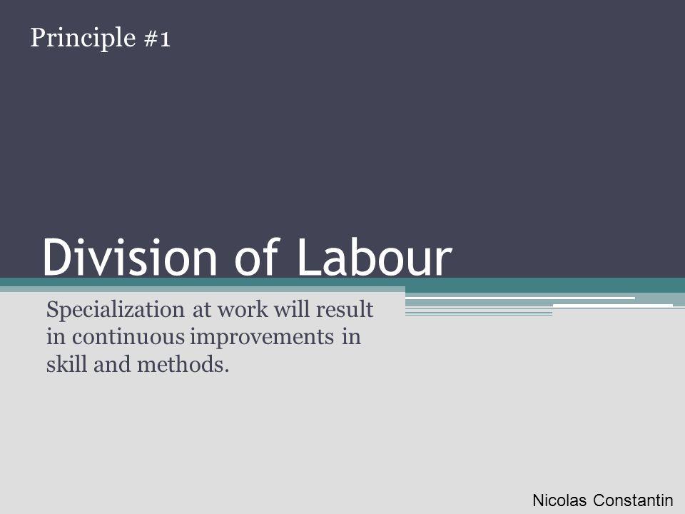 Division of Labour Principle #1