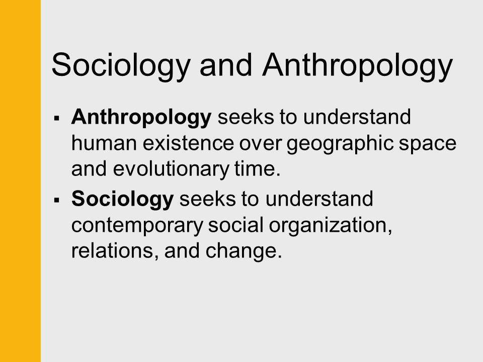 Sociology, Anthropology, and Social Work