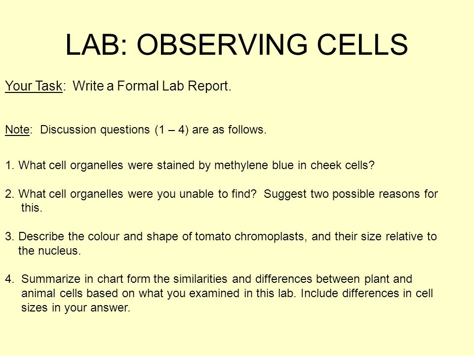 lab report on onion cell Abstract in this project, you'll learn how to isolate dna from onion cells, separating it from other cellular components in a manner that still preserves its structure and sequence.
