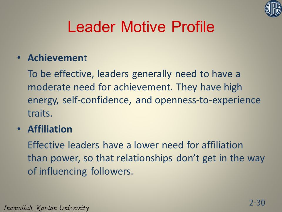 Leader Motive Profile Achievement