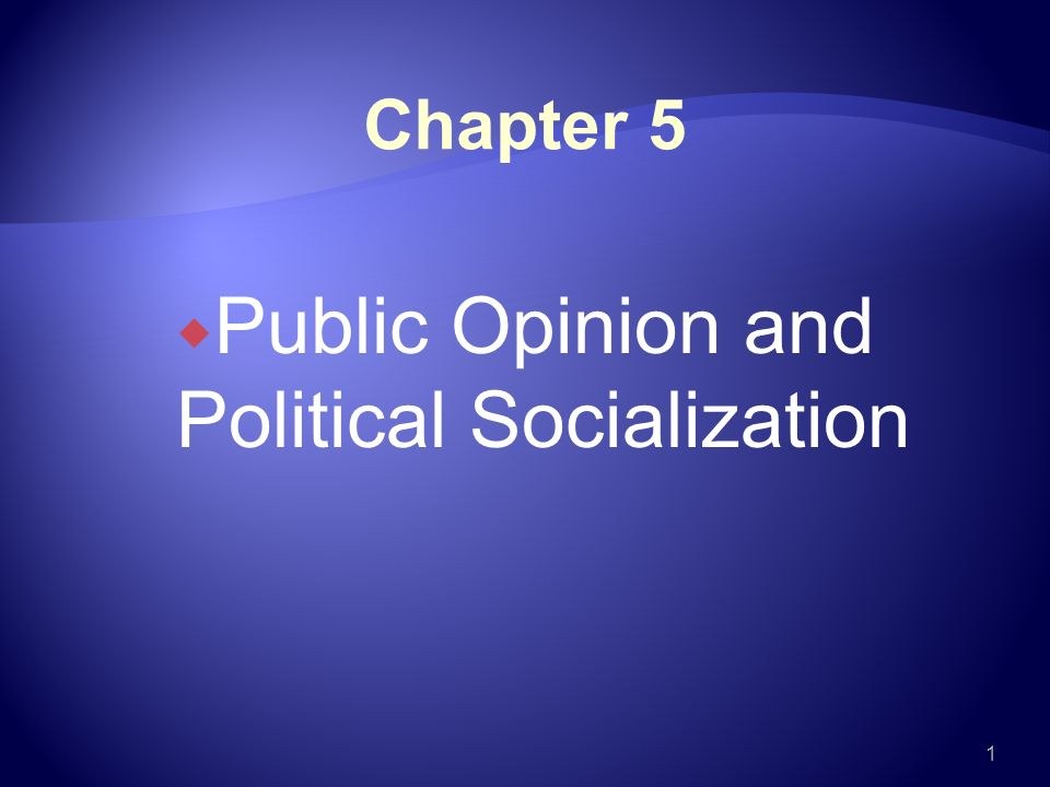 political socialization 3 essay Plsi 100 essay assignment ii my political socialization write an essay on the following: what were the most important agents of political socialization in your life.
