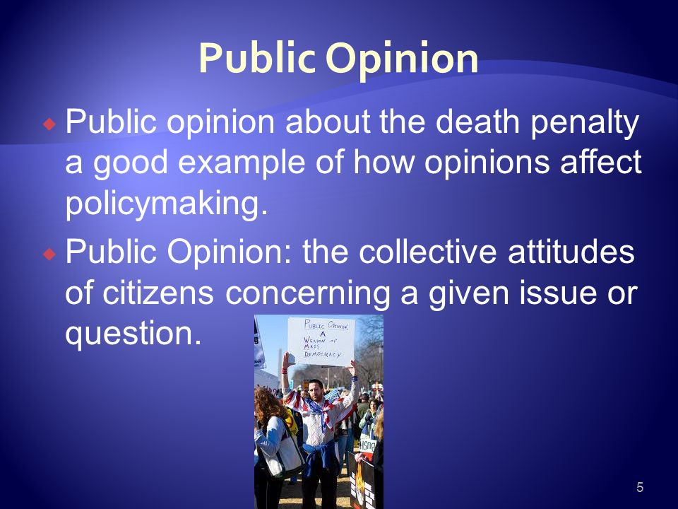 Election and public opinion essay example