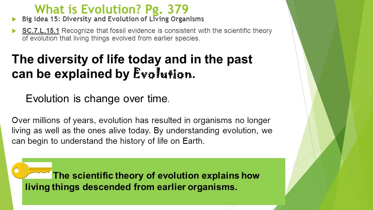 natural selection and the theory of the evolution of living things on earth