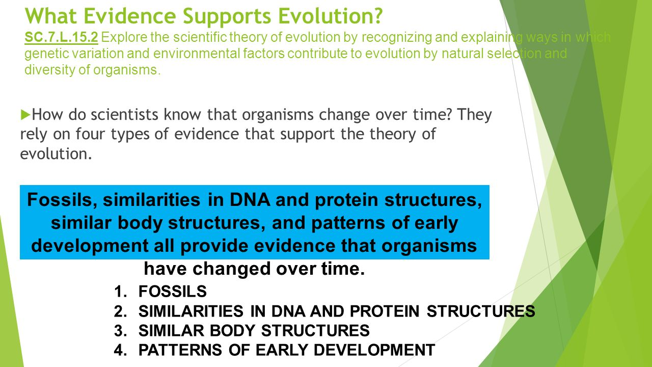 What Evidence Supports The Theory Of Evolution By Natural Selection