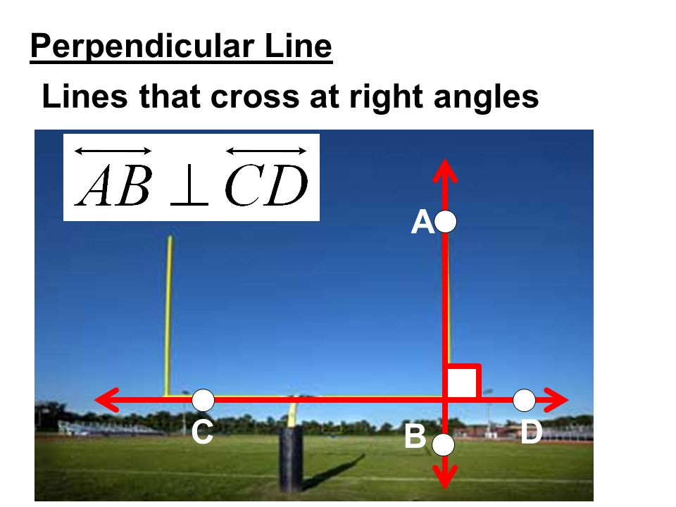 perpendicular lines meet at right angles