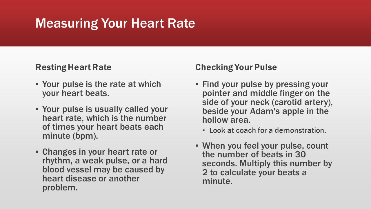 Heart rate ppt download measuring your heart rate nvjuhfo Images