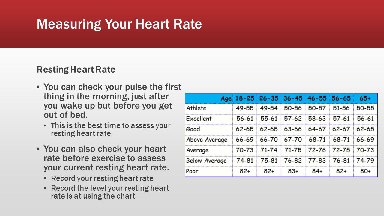 Heart rate ppt download measuring your heart rate geenschuldenfo Images