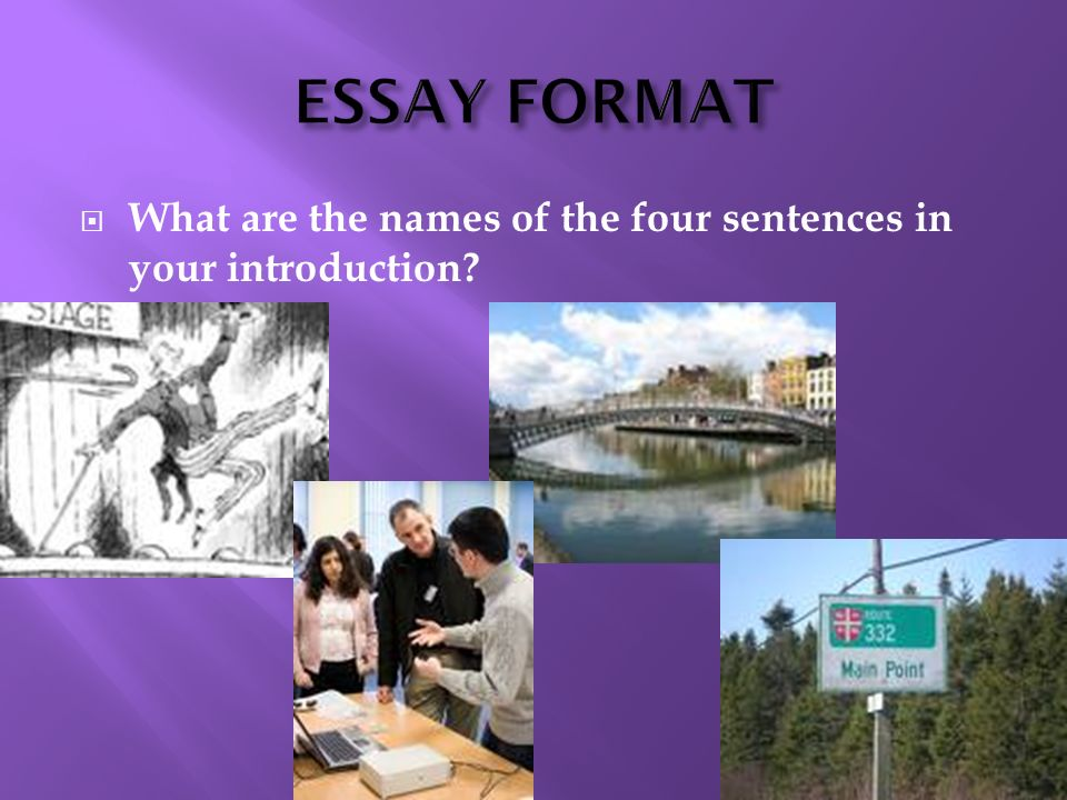 ESSAY FORMAT What are the names of the four sentences in your introduction