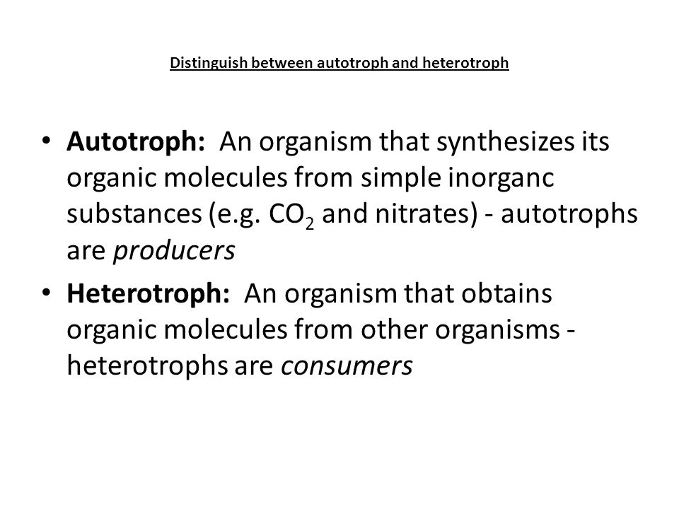 relationship between autotroph and heterotroph ppt