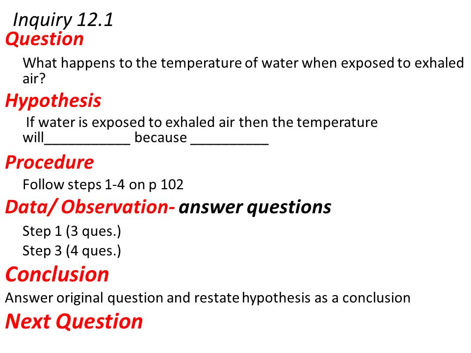 hypothesis questions and answers pdf