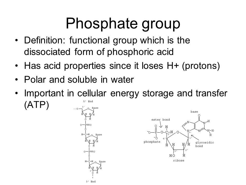 Phosphate Functional Group Functional Grou...