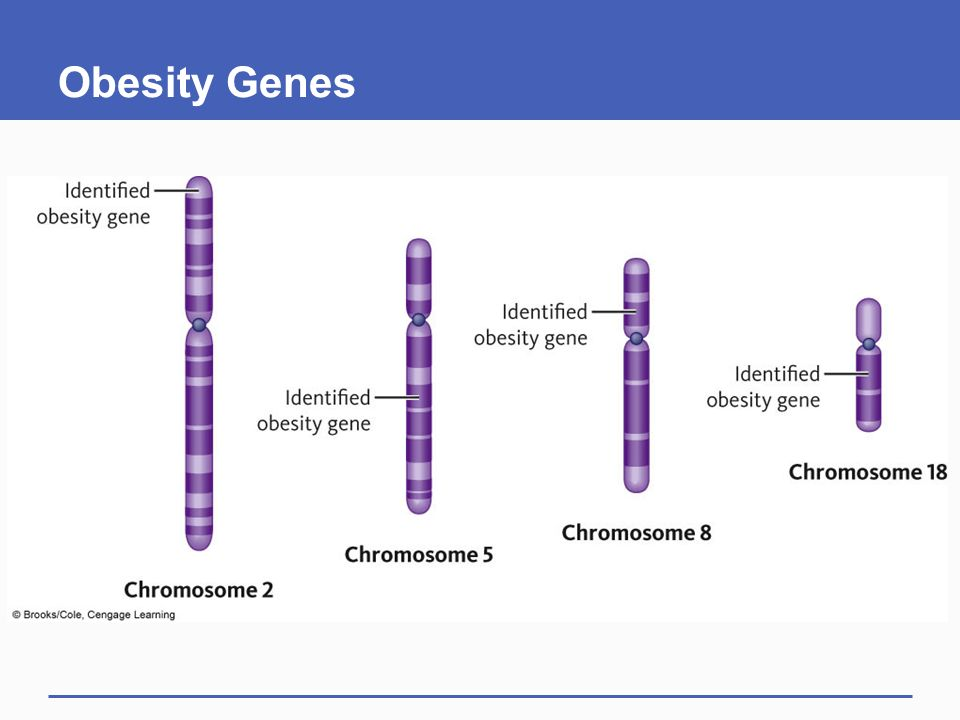 Human genome project results surprising celebrity