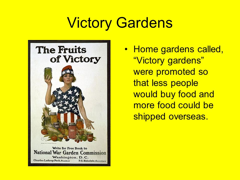 Chapter 9 world war i study guide ppt video online download for What was the goal of victory gardens