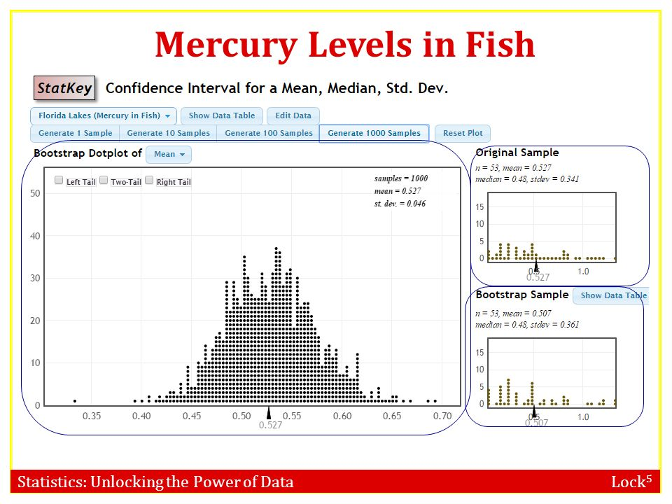 Confidence intervals bootstrap distribution ppt video for Mercury in fish