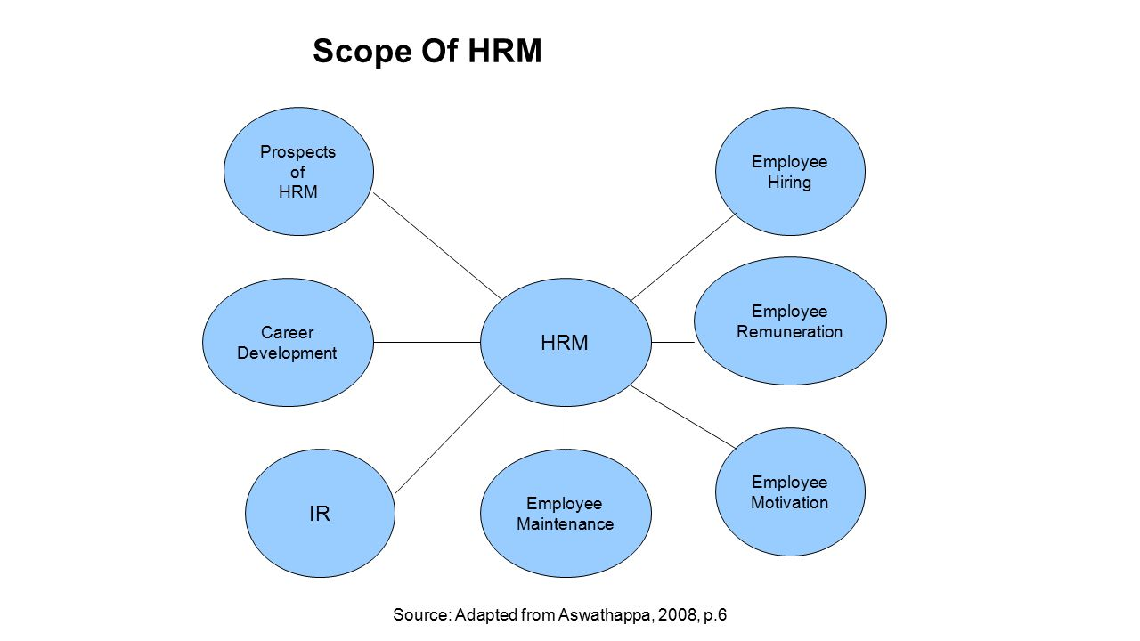 an overview of human resource management