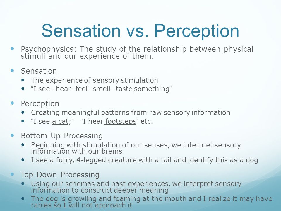 sensation and perception in sports Sensation and perception (s&p) for psych majors-- psyc 4041/ 6014 (spring   motion sickness, mobile phone displays, sports (viewing or participating), etc.