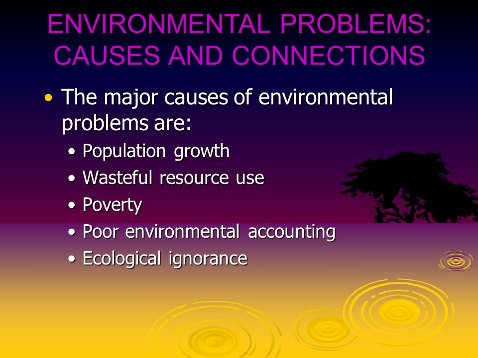 main cause environmental degradation size human population With support from the un population fund (unfpa) population & the environment in developing countries (esa/p/wp123).