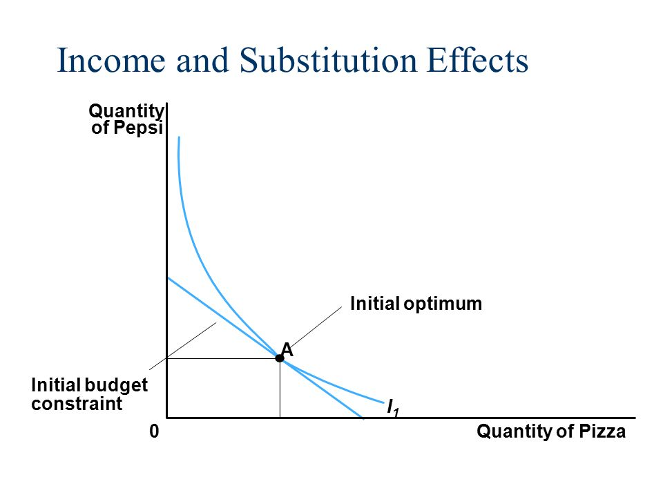 The income and substitution effects account for:?