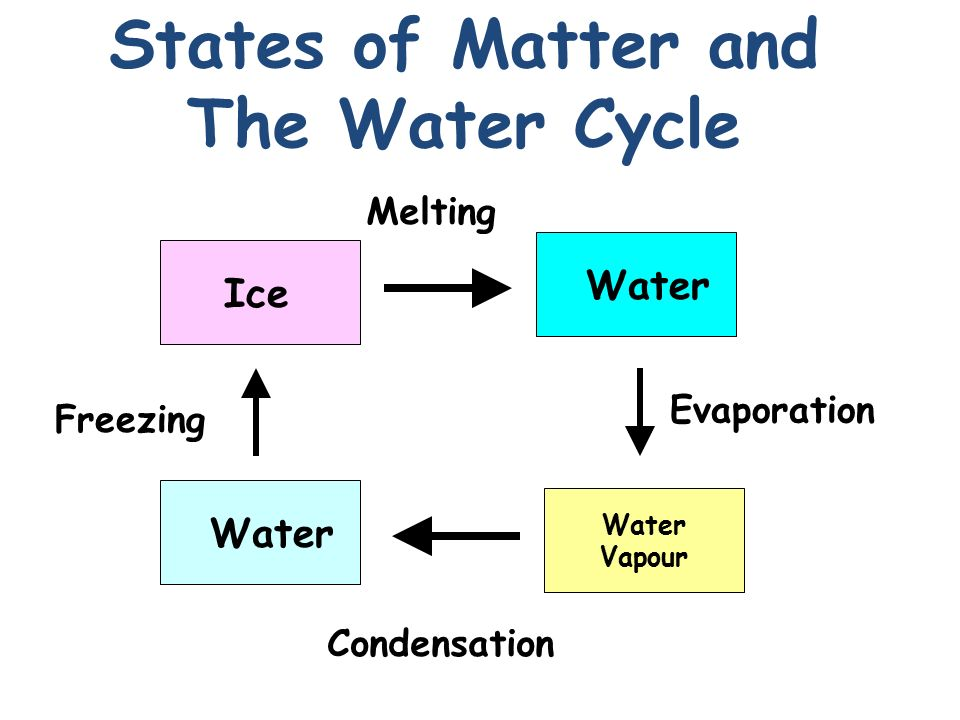3 3 cycles of matter Quiz & worksheet - the nitrogen and carbon cycles quiz course  to learn more about environmental cycles, review the corresponding lesson called cycles of matter: the nitrogen and carbon cycle.