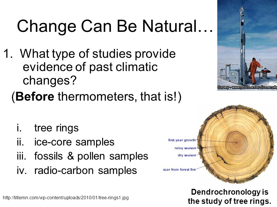 globalwarming ice core samples dendrochronology and Another global warming fraud exposed ice core dioxide content of air bubbles in glacial ice samples of the younger dryas period based on dendrochronology.
