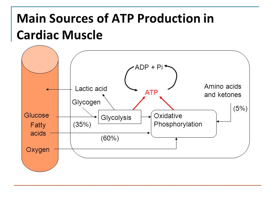 atp production Cellular respiration is the process by which organic compounds (preferably glucose) are broken apart, releasing energy that is used to produce atp molecules cells need to have atp because it's the gasoline that powers all living things.