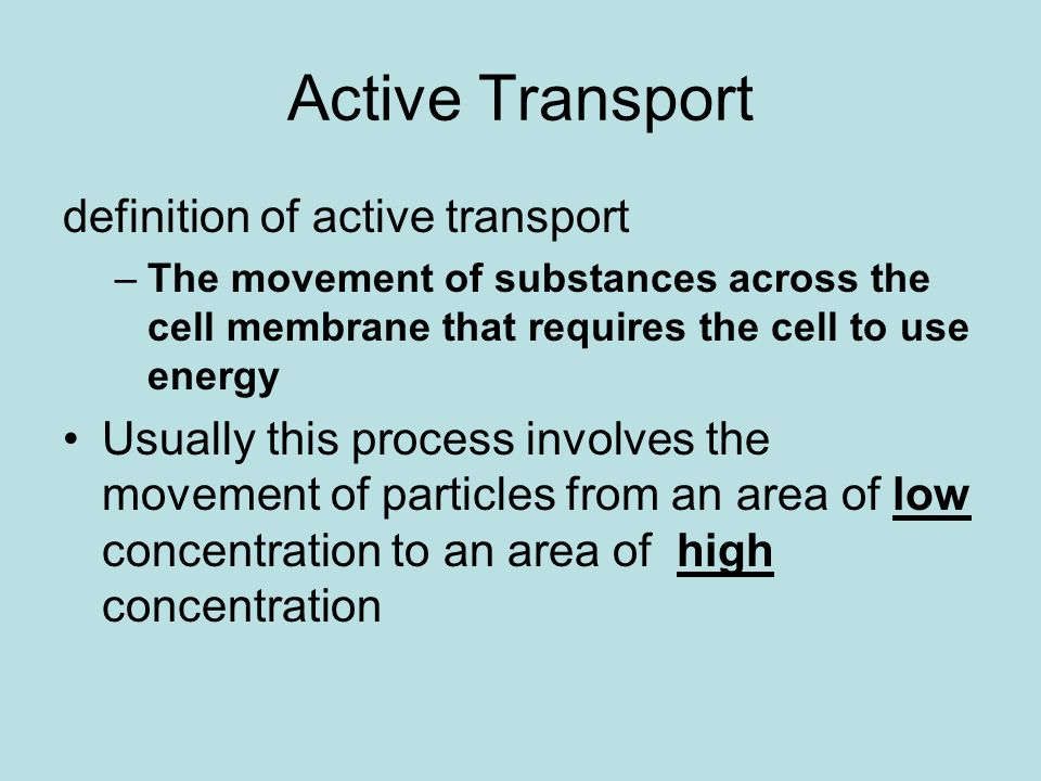 THE CELL IN ACTION. - ppt download