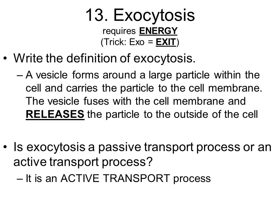 an analysis of exocytosis and endocytosis in active cell transport of cells in the body Osmosis, diffusion and cell transport the sodium-potassium pump in nerve cells is an example of active transport materials out of the cell 2 endocytosis.