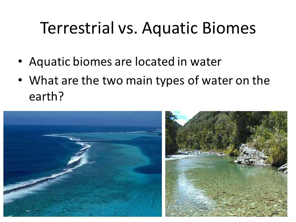 Aquatic Biomes Ppt Download