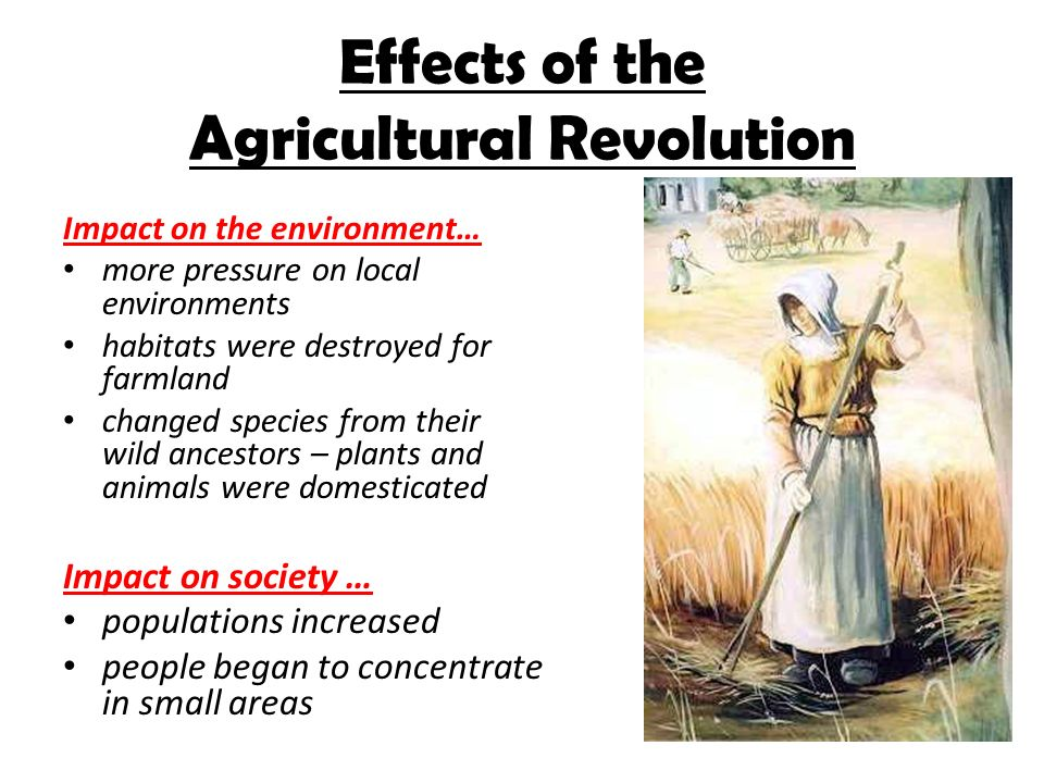 the effects of the agricultural revolution can Best answer: effect on women lives: the british agricultural revolution was the cause of drastic changes in the lives of british women before the agricultural revolution, women worked alongside their husbands in the fields and were an active part of farming.
