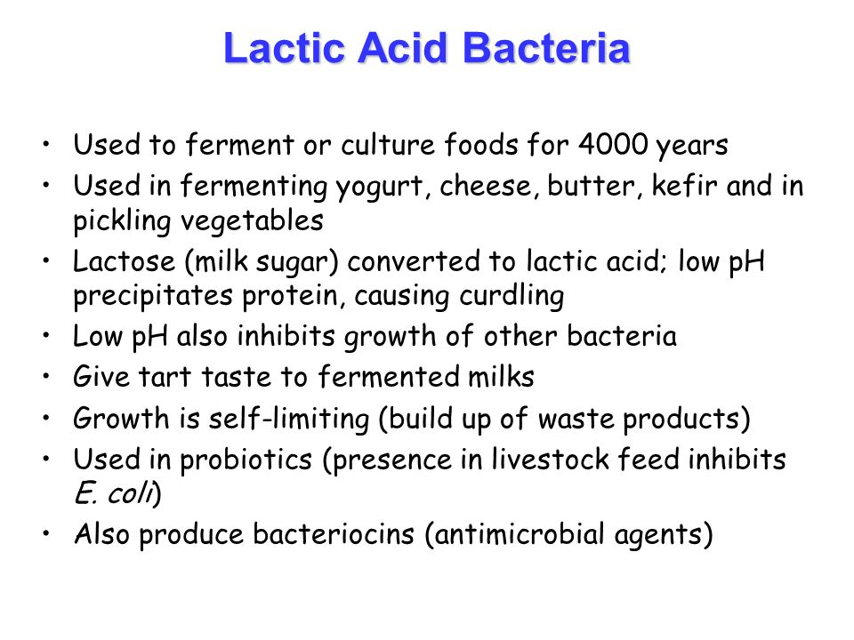 lactic acid bacteria On the health effects of probiotics, lactic acid bacteria (bifidobacterium bifidum, lactobacillus acidophilus, lactobacillus casei and others), gut flora etc.