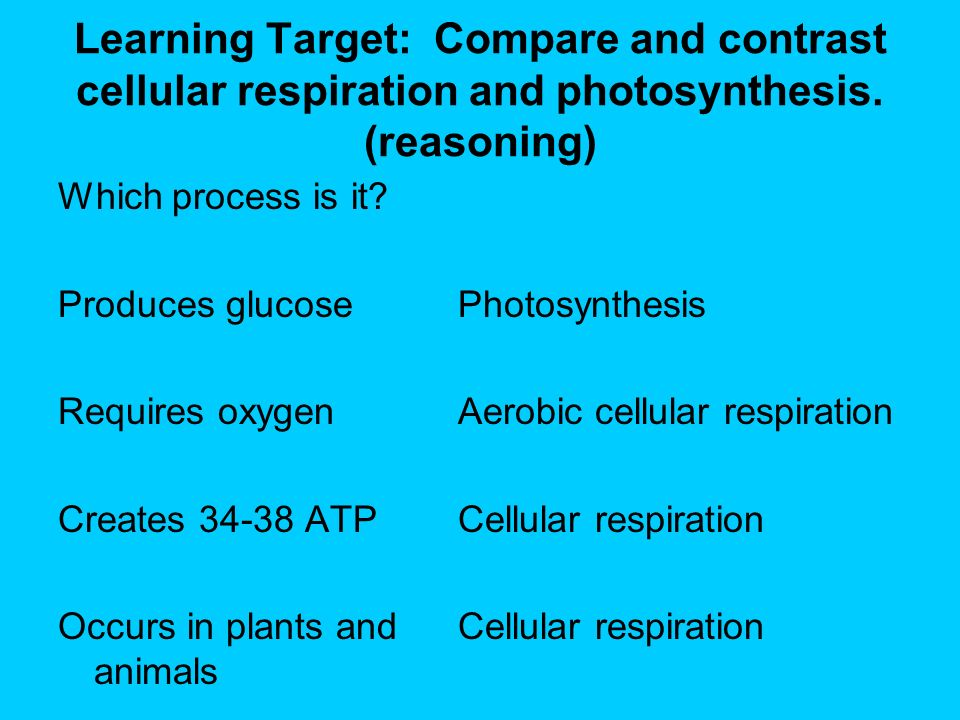 comparing contrasting photosynthesis cellular respiration essay What's the difference between cellular respiration and photosynthesis photosynthesis and respiration are reactions that complement each other in the environment.